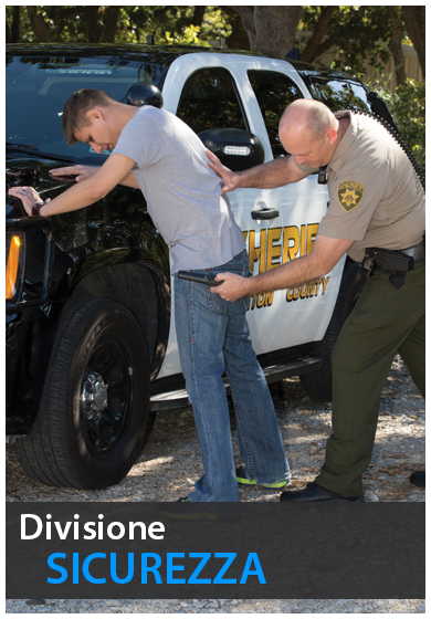 divisione sicurezza metal detector garrett